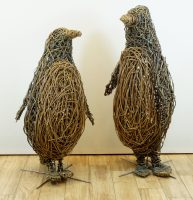 Photo of two willow penguins charring one is larger than the other , they are in 2 tone brown willow
