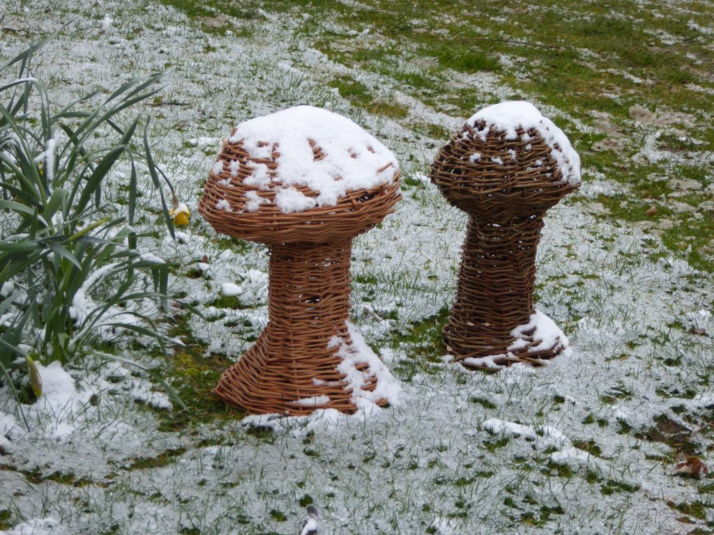 willow mushroom sculptures in snow one large wide brim one more stubby
