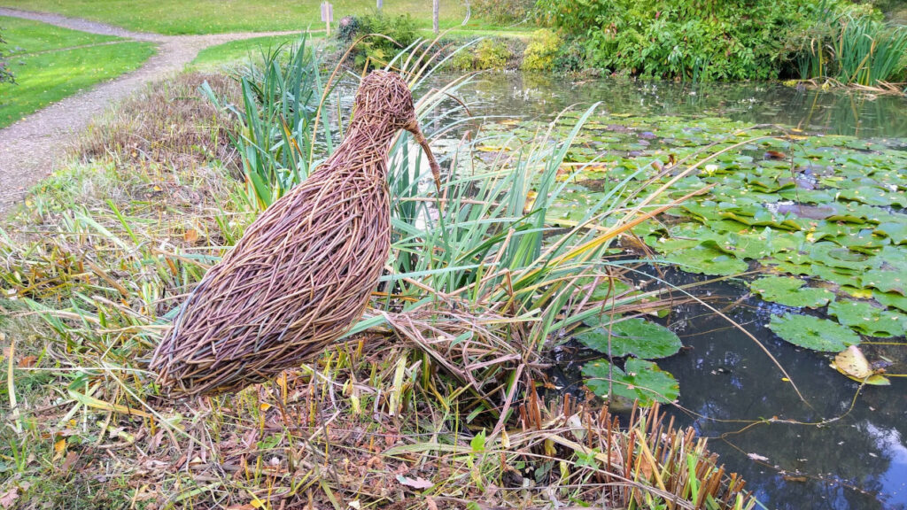 Photo of willow curlew sculpture by Jacqueline Rolls
