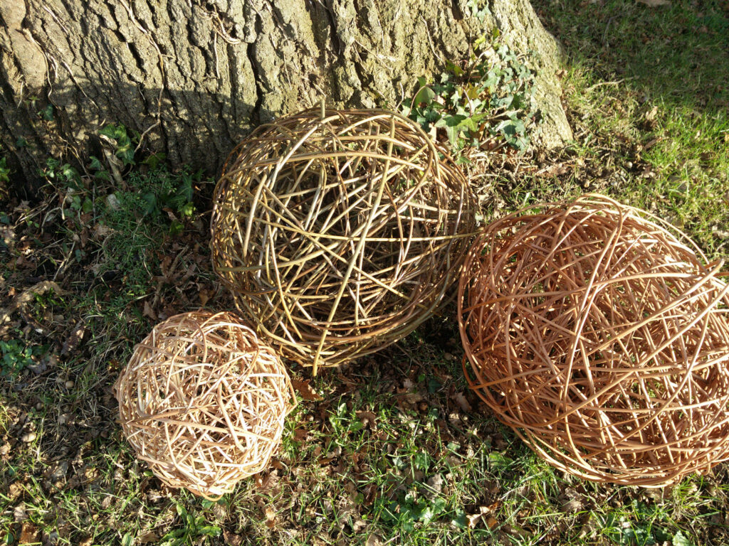 willow spheres by a tree